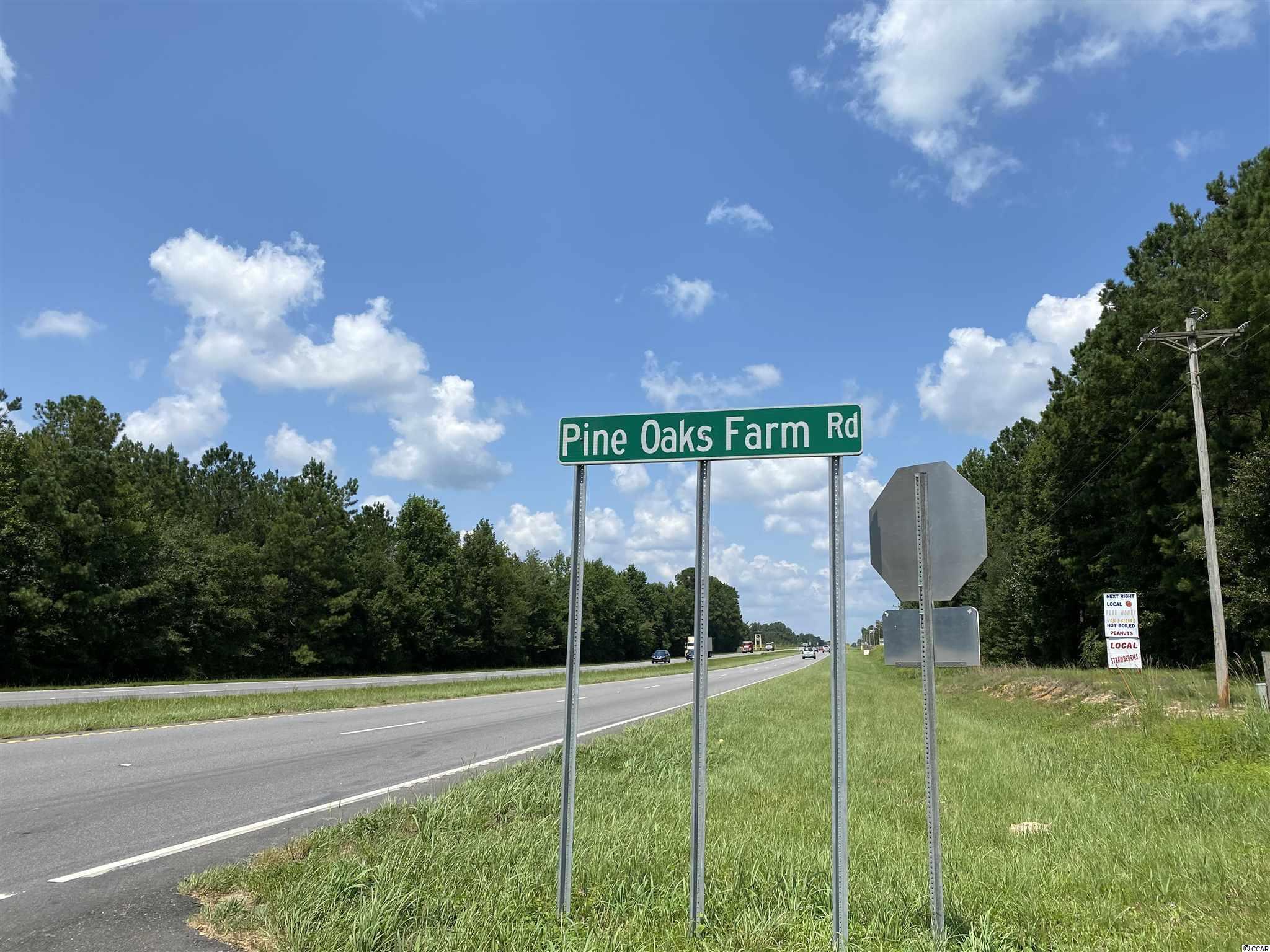 Tbd Highway 501 Property Photo 16