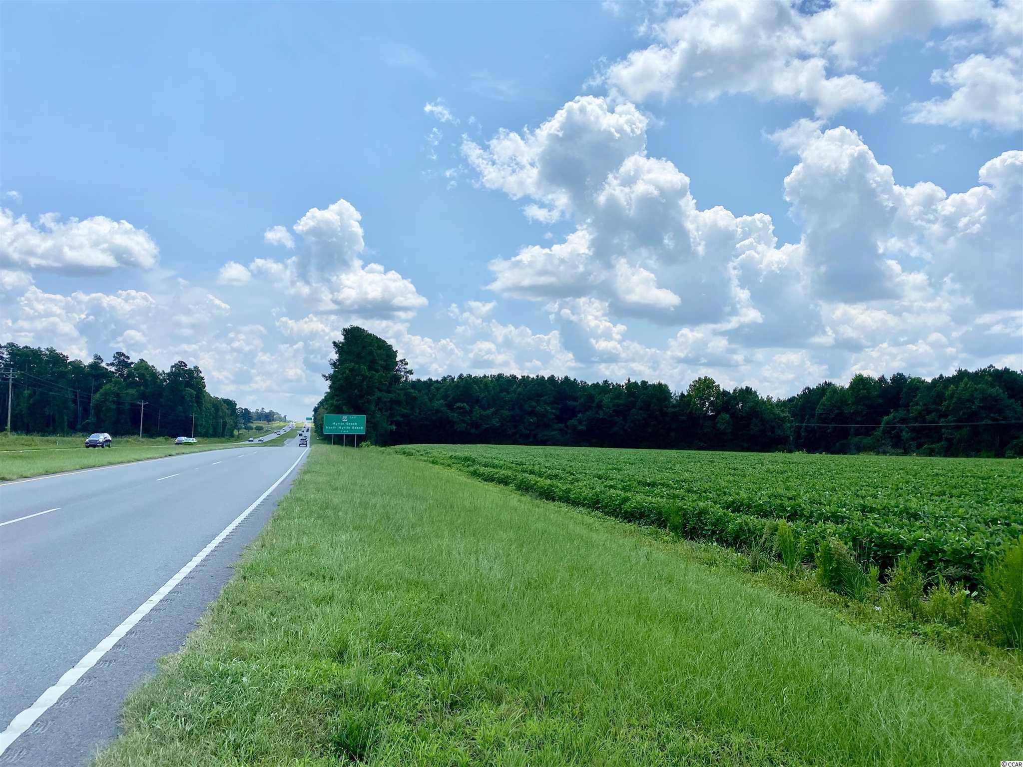 Tbd Highway 501 Property Photo 18