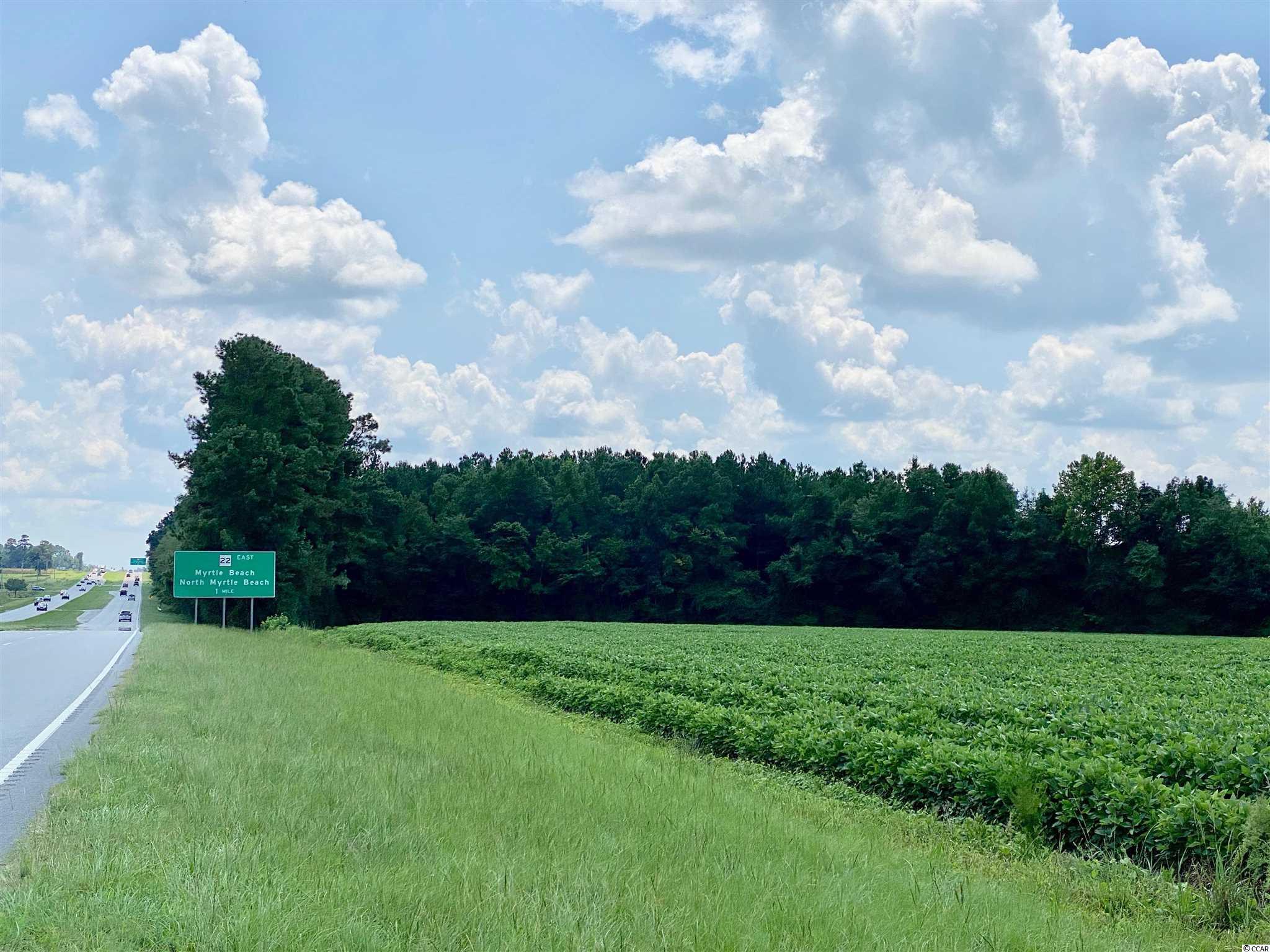 Tbd Highway 501 Property Photo 19