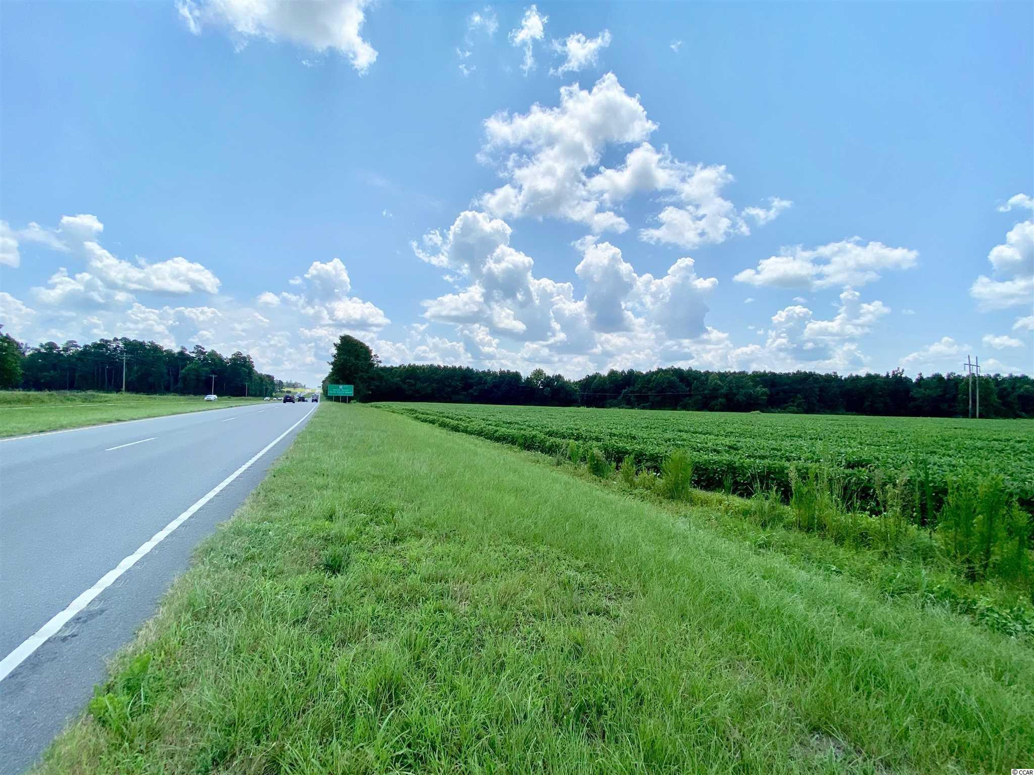 Tbd Highway 501 Property Photo 21