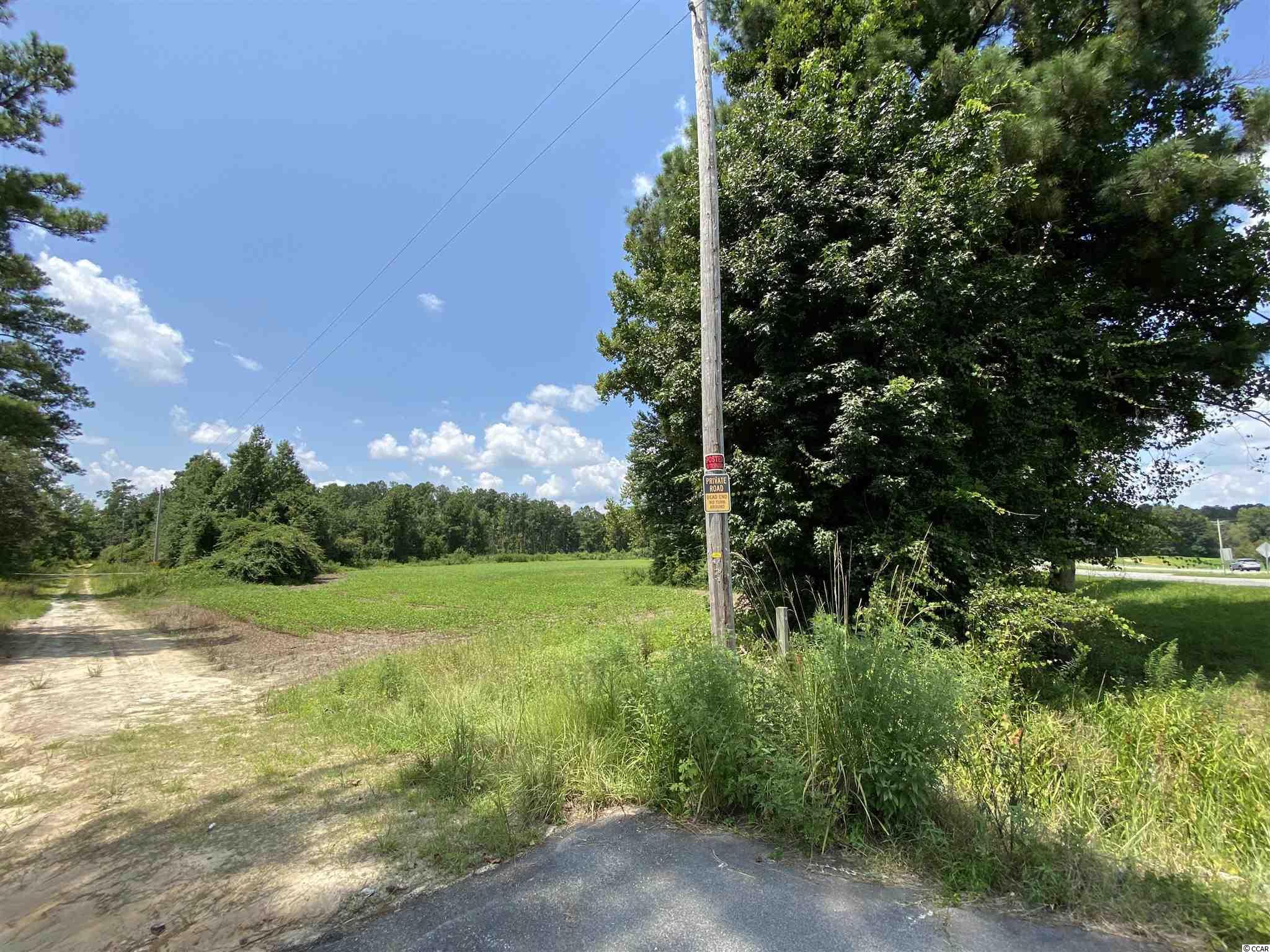 Tbd Highway 501 Property Photo 26