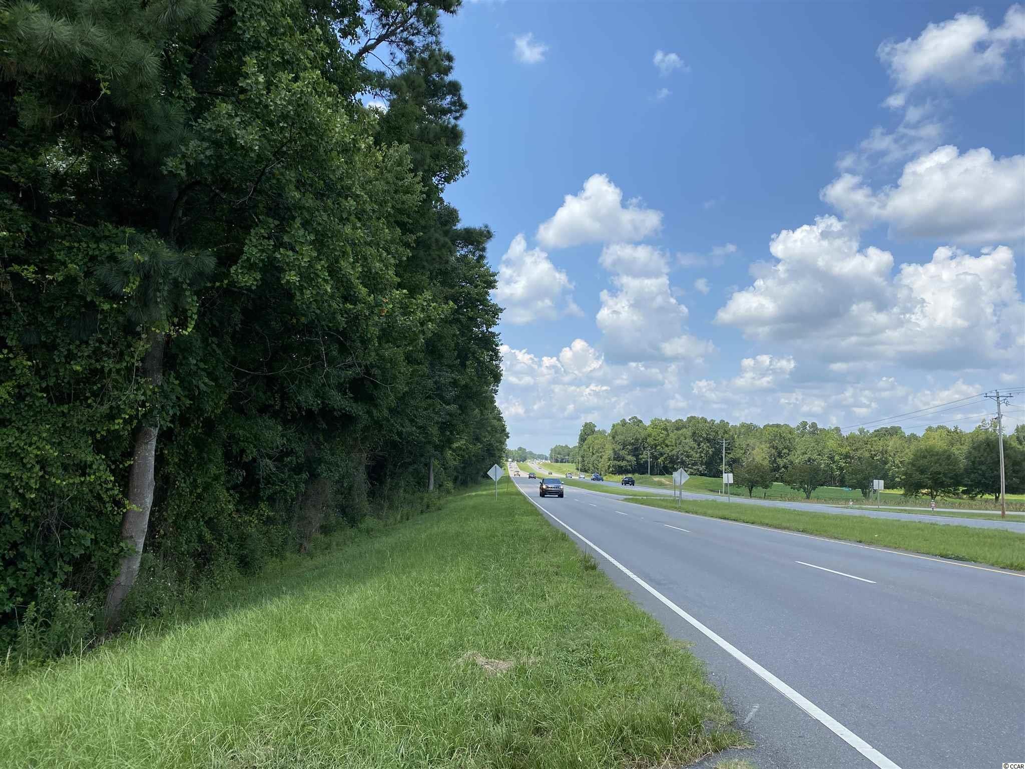 Tbd Highway 501 Property Photo 27