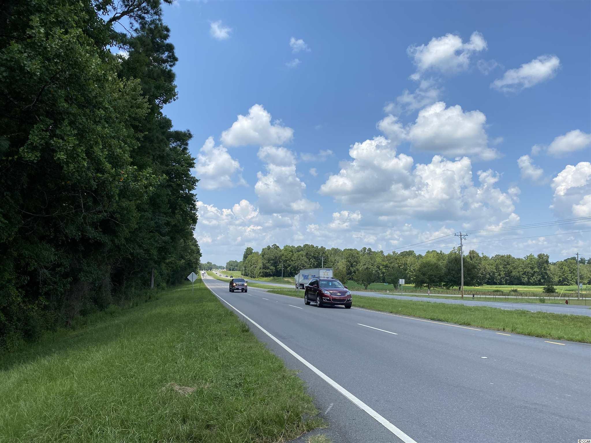 Tbd Highway 501 Property Photo 29