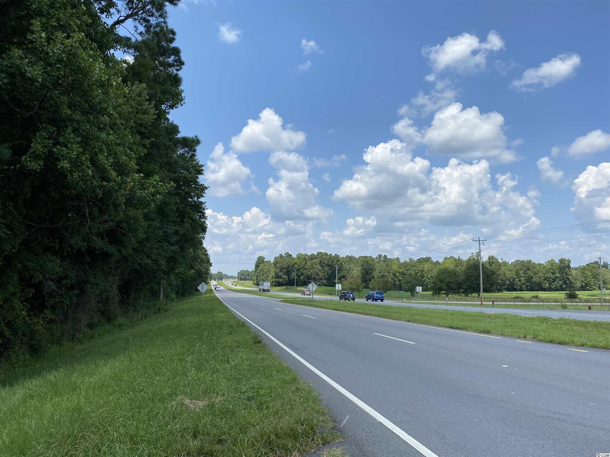 Tbd Highway 501 Property Photo 31