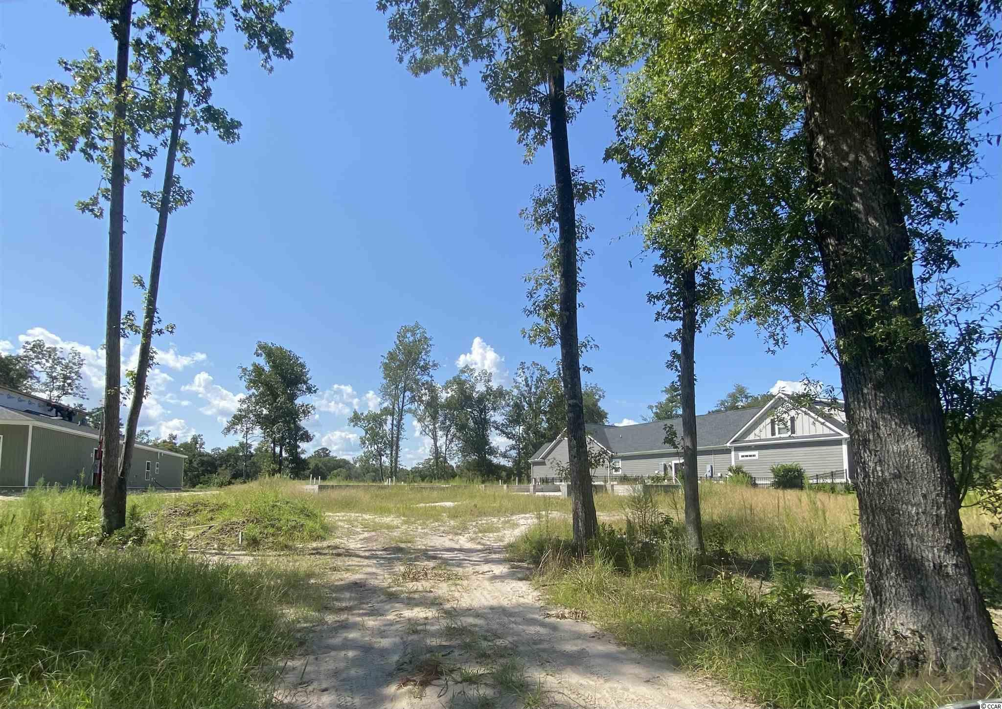 Bear Bluff Plantation Real Estate Listings Main Image