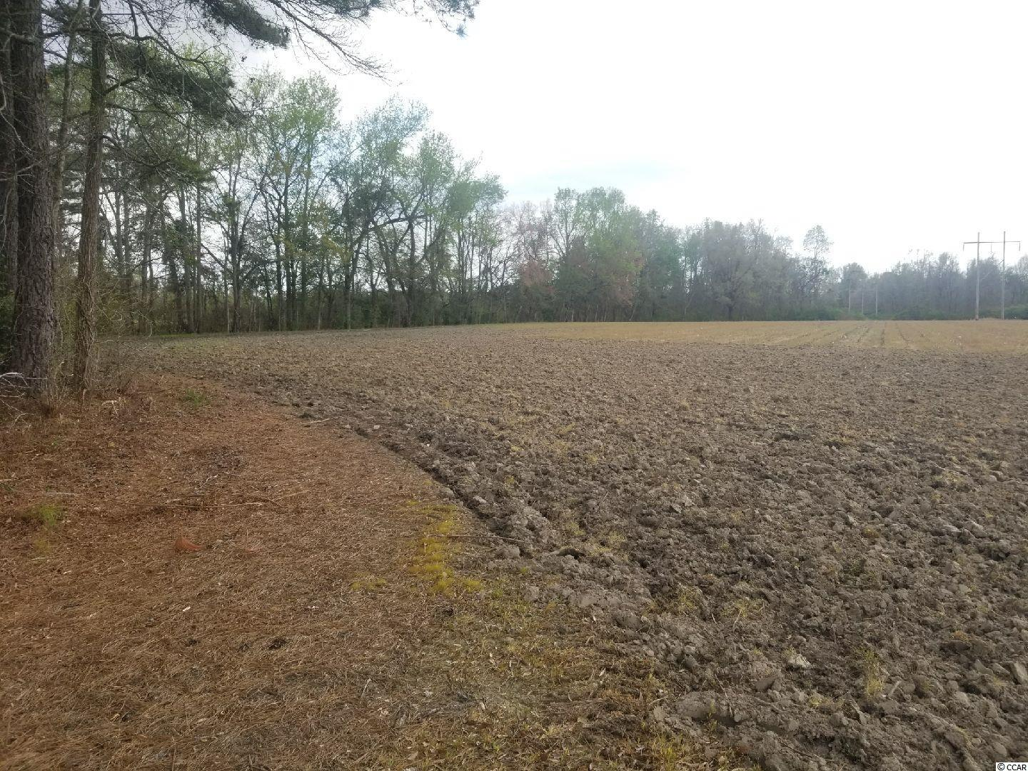 Tbd Willow Pond Rd. Property Photo