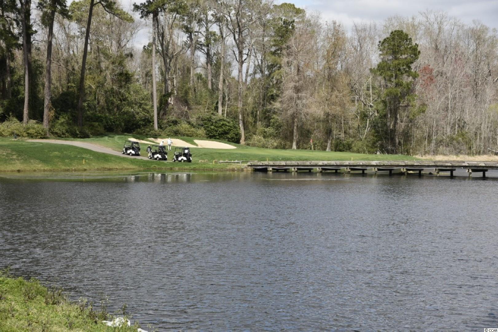 9540 Shore Dr. Property Photo 36