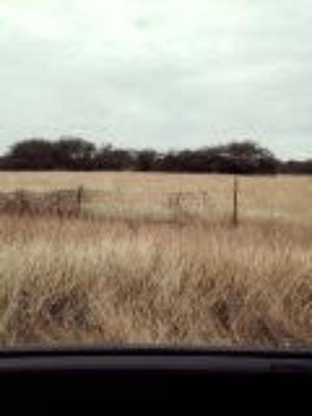 0 CR 1341--Lot 53 Property Photo - Alice, TX real estate listing