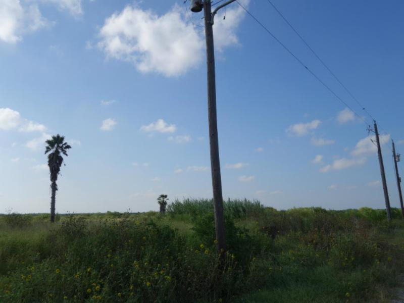 0 County Road 33(On Oso Creek) Property Photo - Corpus Christi, TX real estate listing