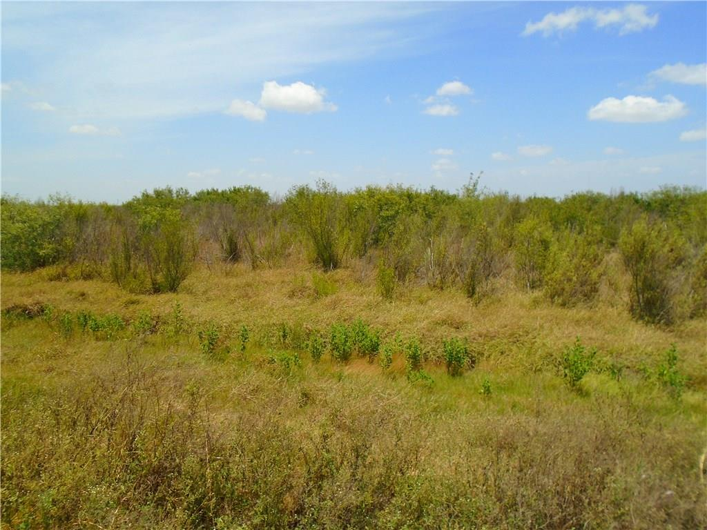 0000 CR Road 45 & State Hwy 286 Property Photo - Corpus Christi, TX real estate listing