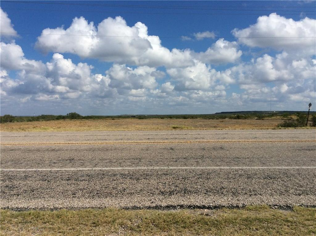 0 Hwy. 44 Highway Property Photo - Freer, TX real estate listing