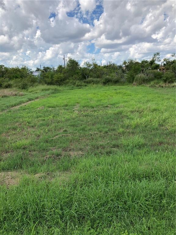 309 First Street Property Photo - Bayside, TX real estate listing