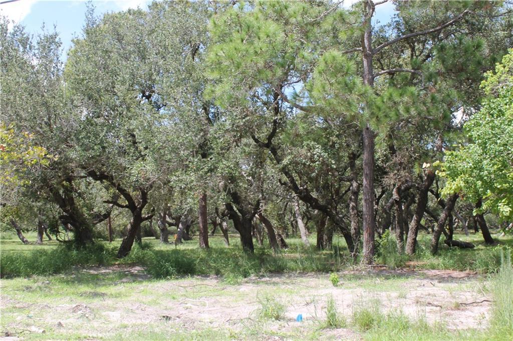 0 Danforth Lane Property Photo - Ingleside, TX real estate listing