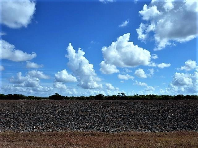 0000 Buddy Ganem (fm 3239) 8.698 Acres Property Photo