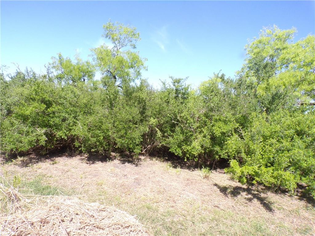 715 2nd Street Property Photo - Bayside, TX real estate listing