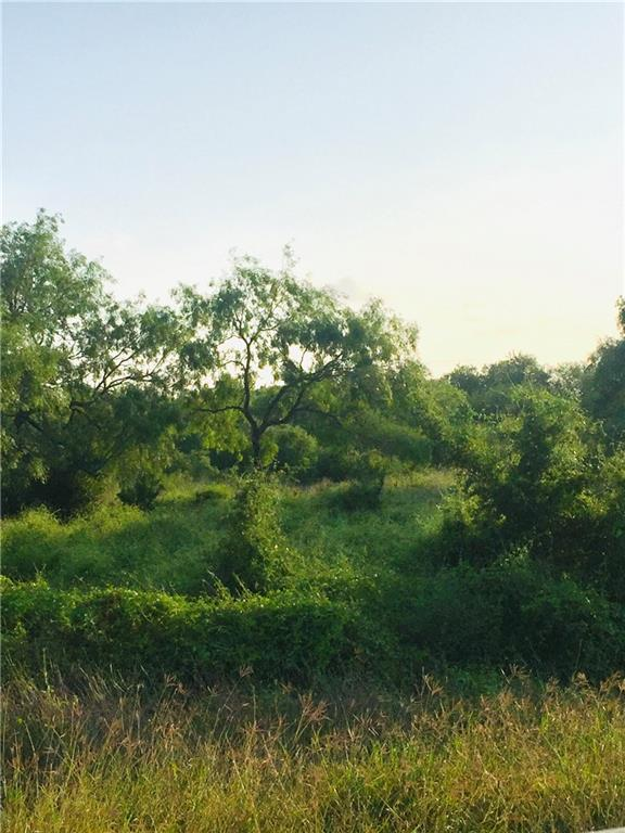 23 Deer Meadows- Lot 23- 3.88 Acres Drive Property Photo