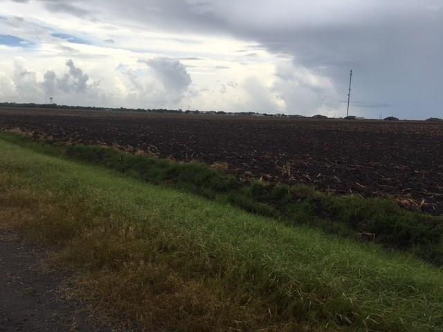 0 Co. Rd. 309 & W FM 738 Tract 2 Property Photo - Orange Grove, TX real estate listing