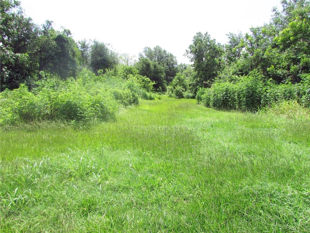 0 N DUVAL Property Photo - Goliad, TX real estate listing