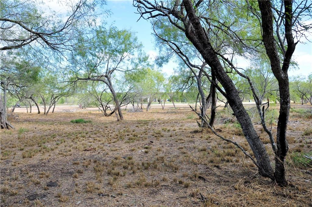 21041 Galway Drive Property Photo - Mathis, TX real estate listing