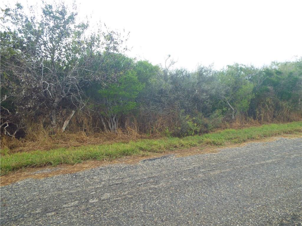 6025 CR 523 Property Photo - Skidmore, TX real estate listing