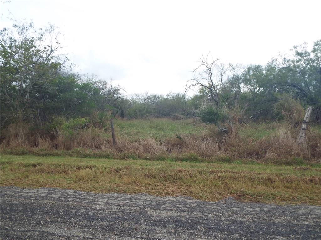 6101 CR 523 Property Photo - Skidmore, TX real estate listing
