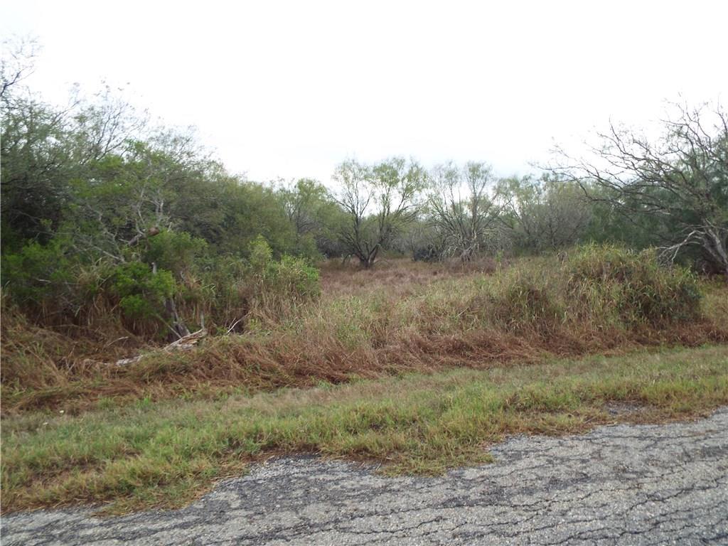 6131 CR 523 Property Photo - Skidmore, TX real estate listing