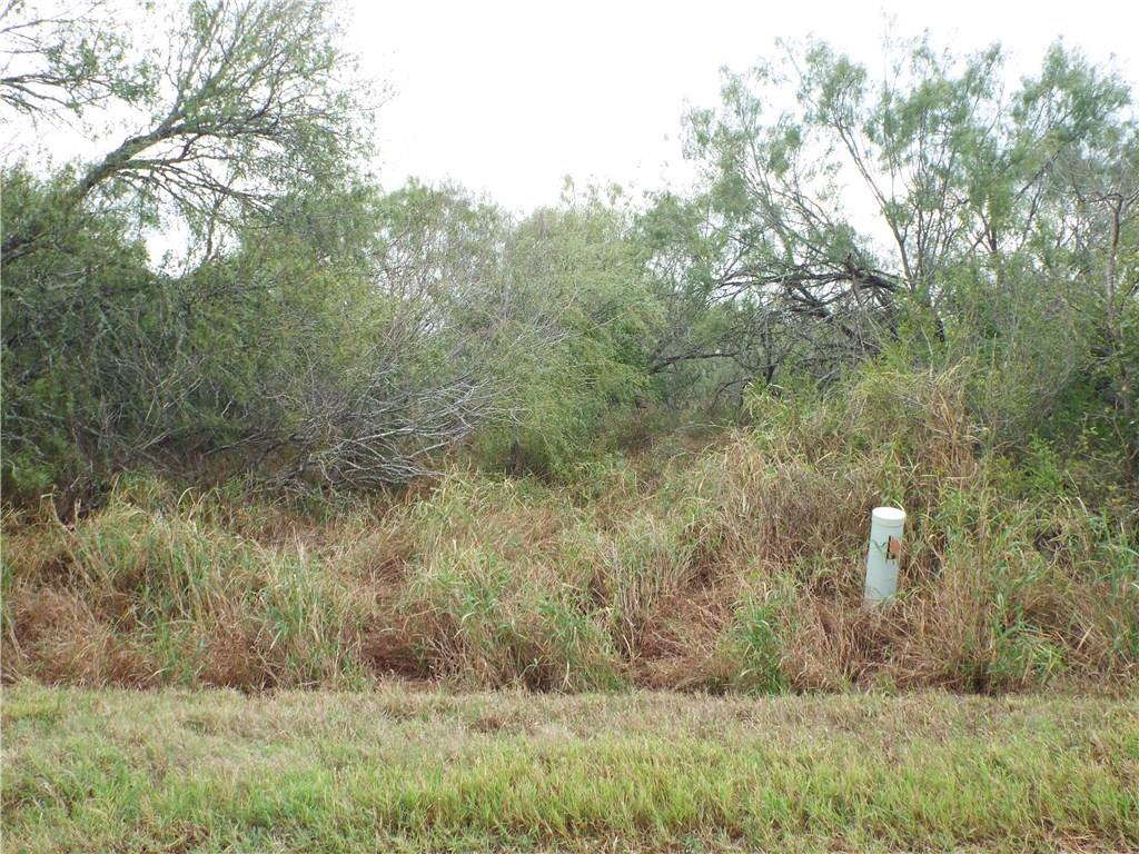 6163 CR 523 Property Photo - Skidmore, TX real estate listing