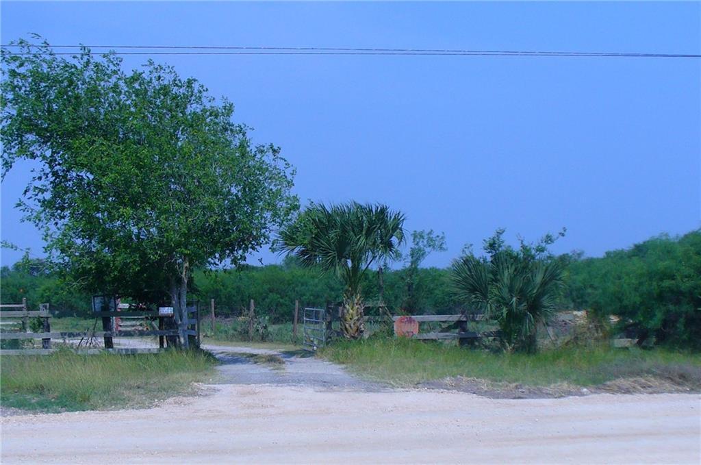 354513 Property Photo