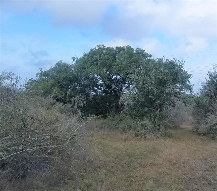 4181 La Para Road Property Photo
