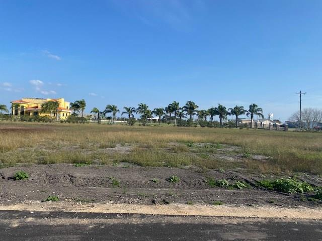 103 Atkinson Property Photo - Orange Grove, TX real estate listing
