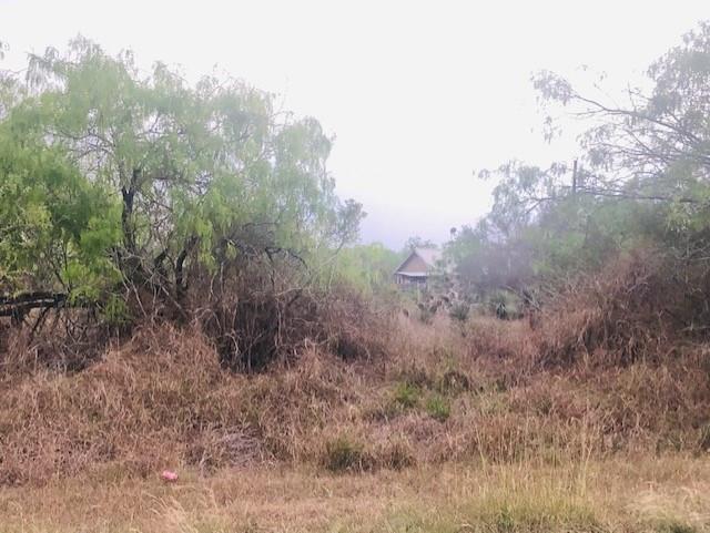 359042 Property Photo