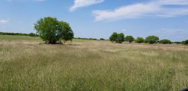 1103 E Fm 628 Property Photo - Riviera, TX real estate listing