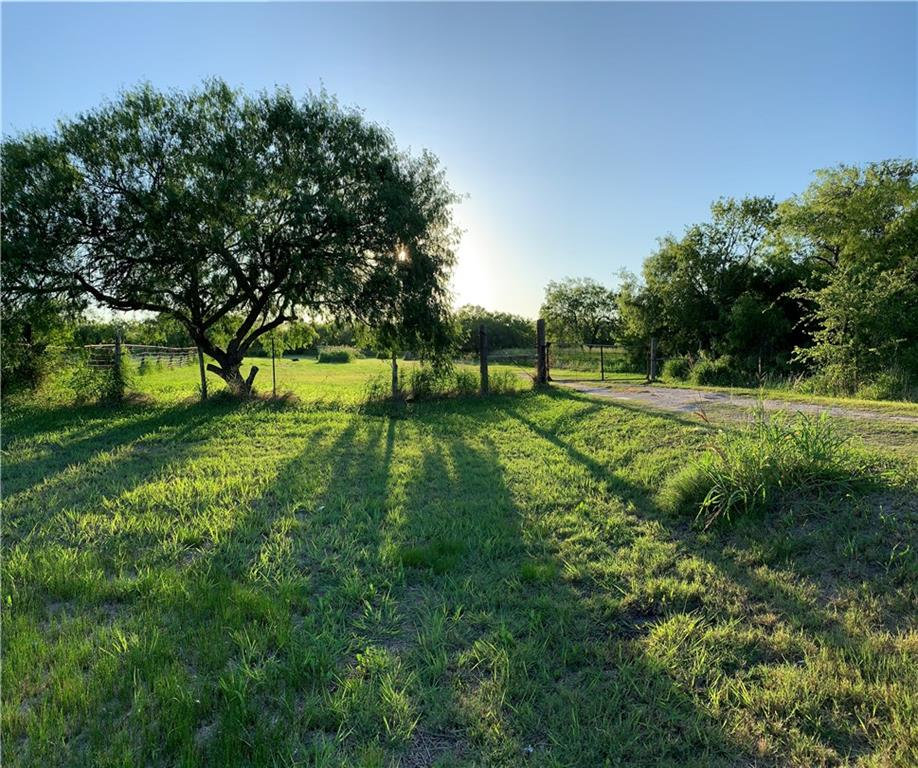 398 E Sullivan St Property Photo - Skidmore, TX real estate listing
