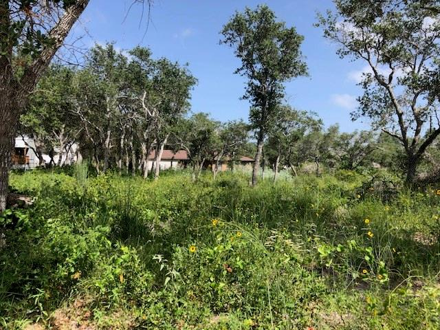 0 S 13th Street Property Photo - Aransas Pass, TX real estate listing