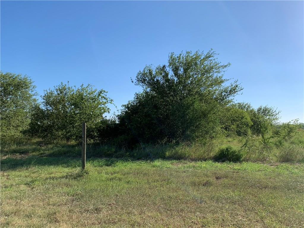 8960 CR 615 Property Photo - Skidmore, TX real estate listing