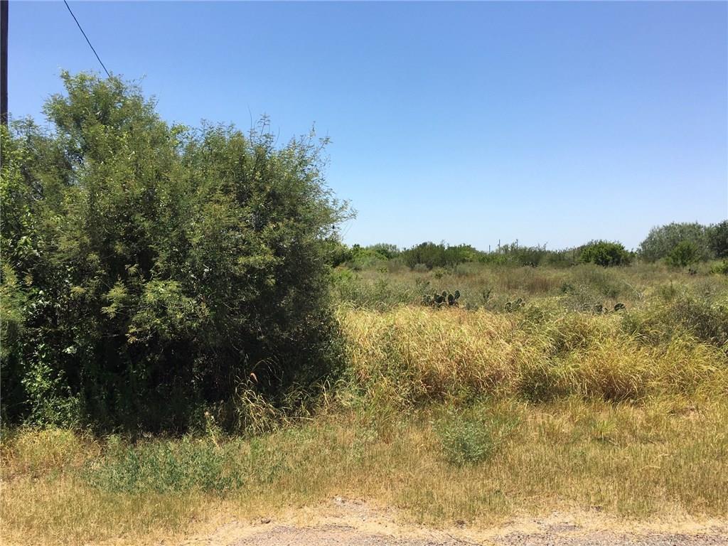 44 Robbie Drive Property Photo - Hebbronville, TX real estate listing