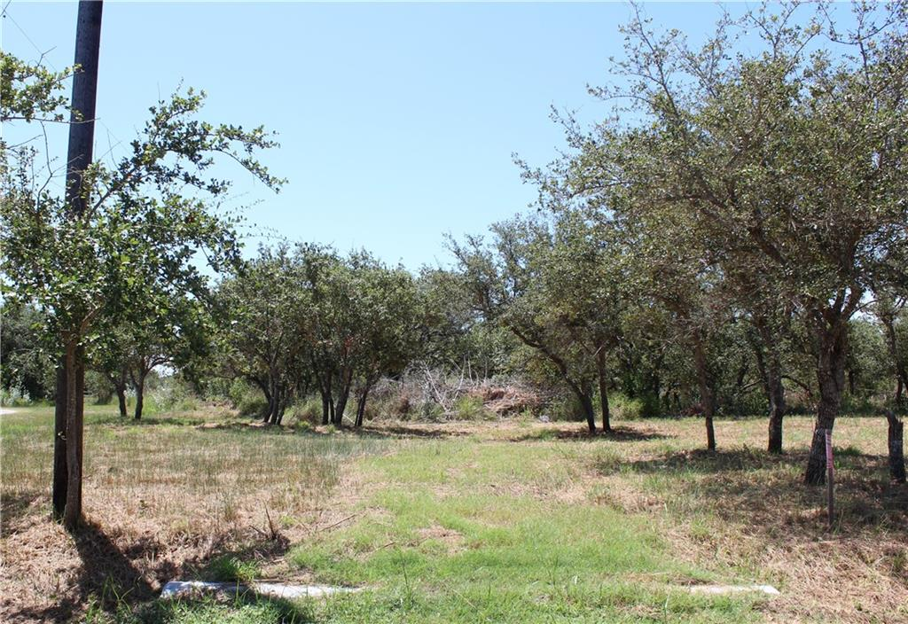 1204 Lone Star Road Property Photo - Fulton, TX real estate listing