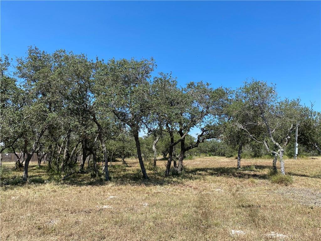 1726 W Gile Avenue Property Photo - Aransas Pass, TX real estate listing