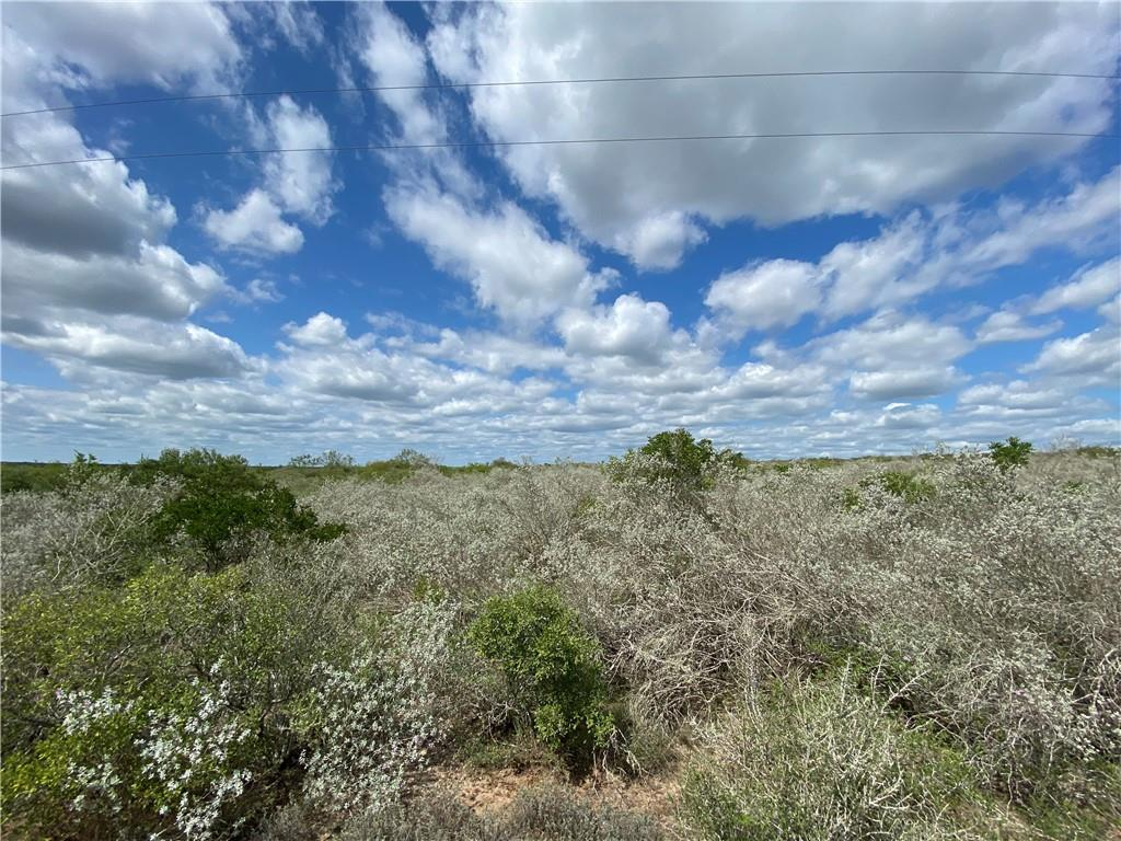 195 FRONTIER 8 Road Property Photo - San Diego, TX real estate listing