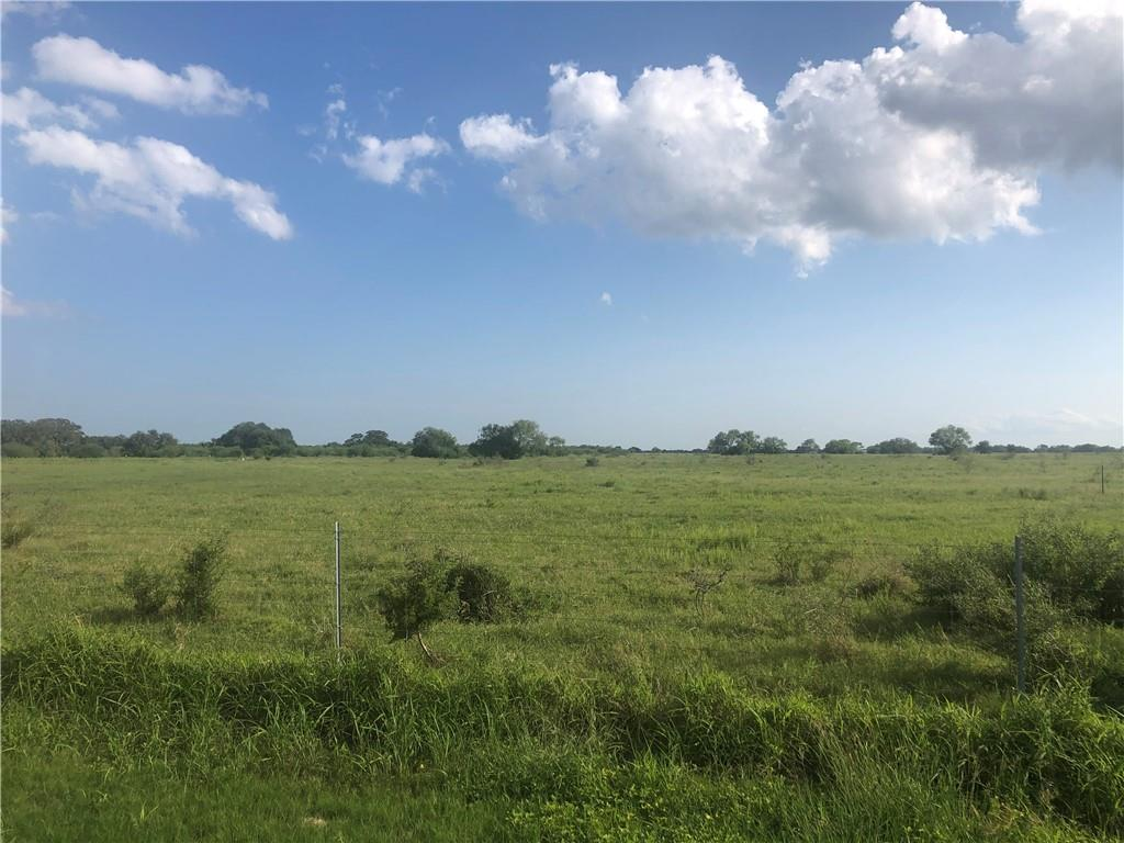14561 County Rd 908 Property Photo - Sinton, TX real estate listing