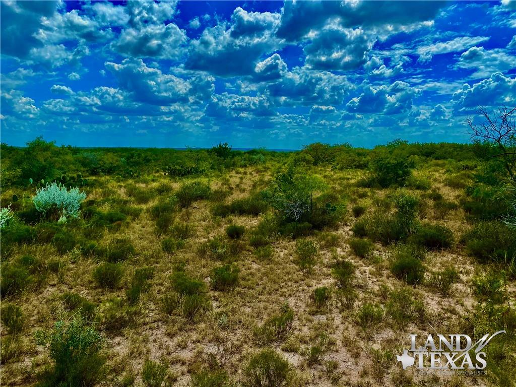 0 County Road 405 Property Photo - Freer, TX real estate listing