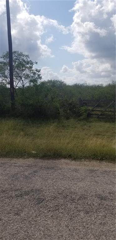 000 FM 738 Property Photo - Orange Grove, TX real estate listing