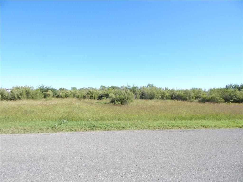 3206 COUNTY ROAD 44 Property Photo - Robstown, TX real estate listing