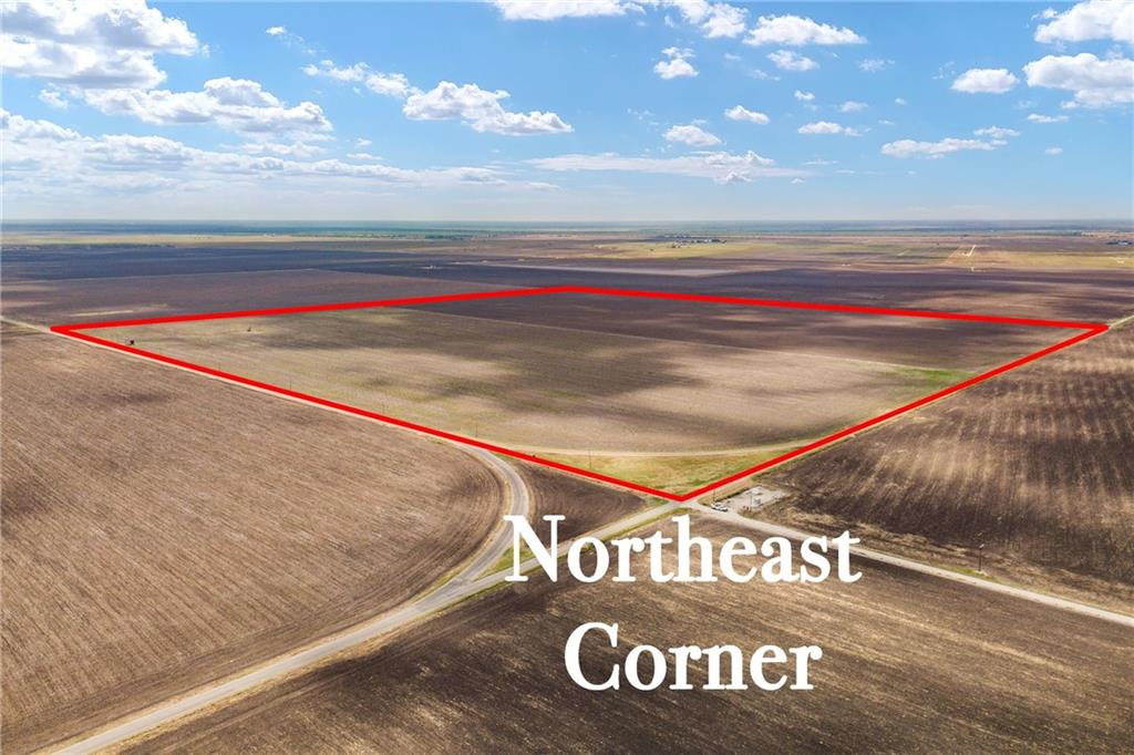 none County Road 95 Circle Property Photo - Bishop, TX real estate listing