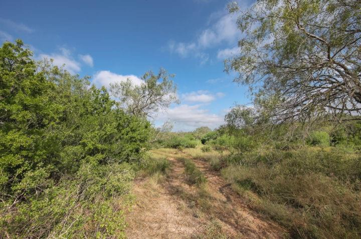 1170 FM 889 Property Photo - George West, TX real estate listing