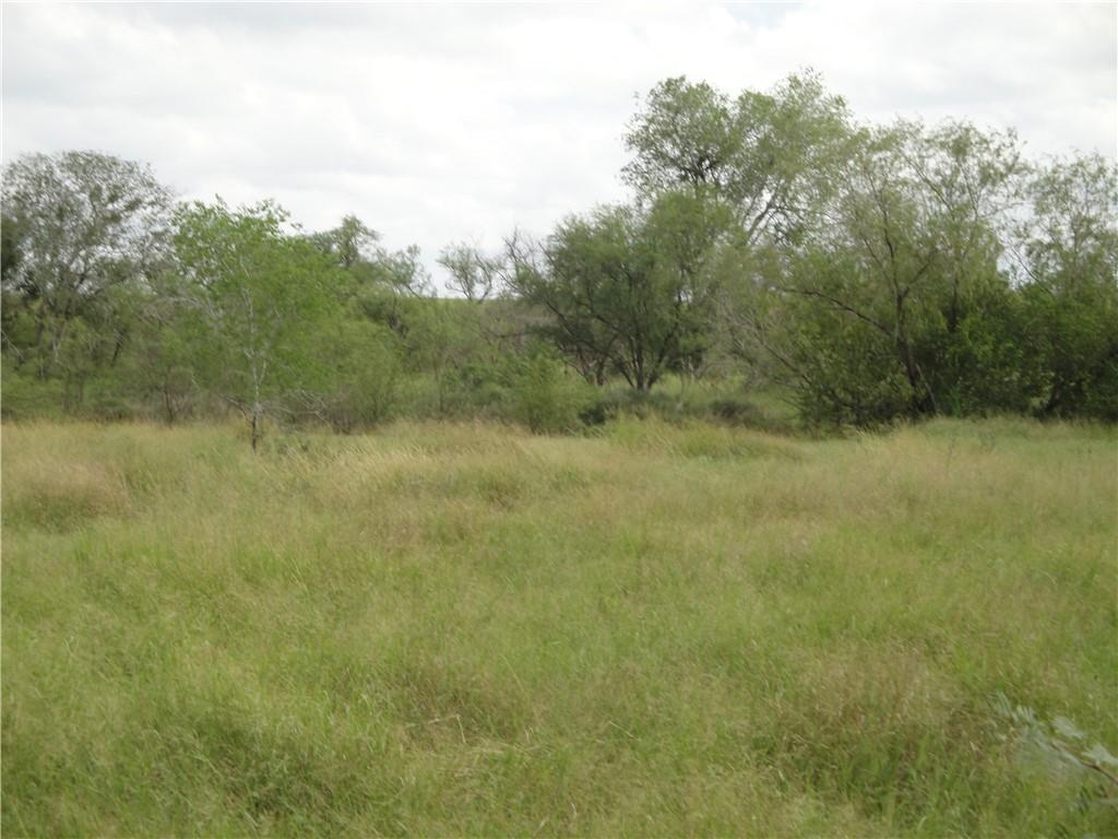 S Vogelsang Lane Property Photo - Dinero, TX real estate listing