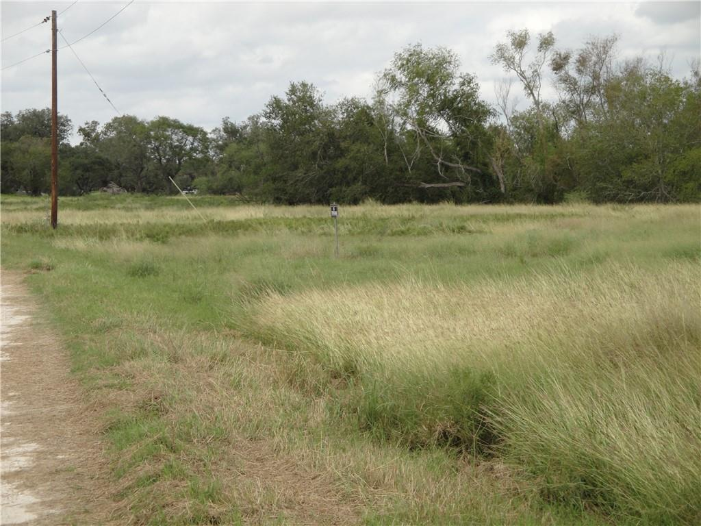 Vogelsang Lane Property Photo - Dinero, TX real estate listing