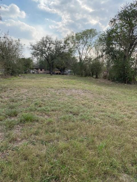 407 W Maupin Street Property Photo - Alice, TX real estate listing
