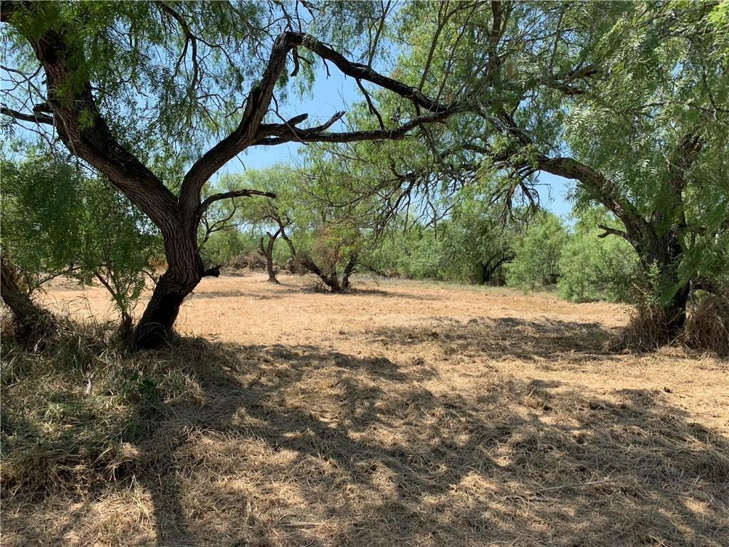 0 Guadalupe- .34 Acre Lot Street Property Photo