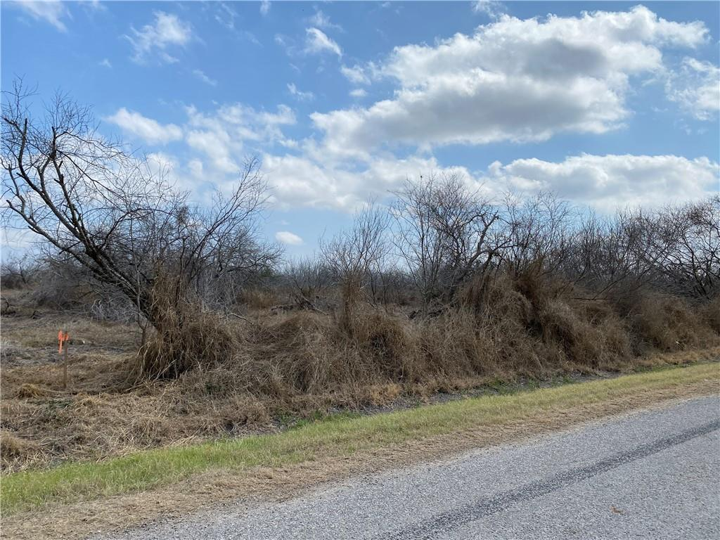Tract 2 County Road 2431 Property Photo